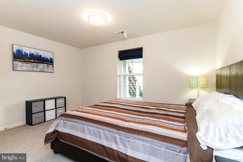 Lower level bedroom 1 - 23384 MORNING WALK DR, BRAMBLETON
