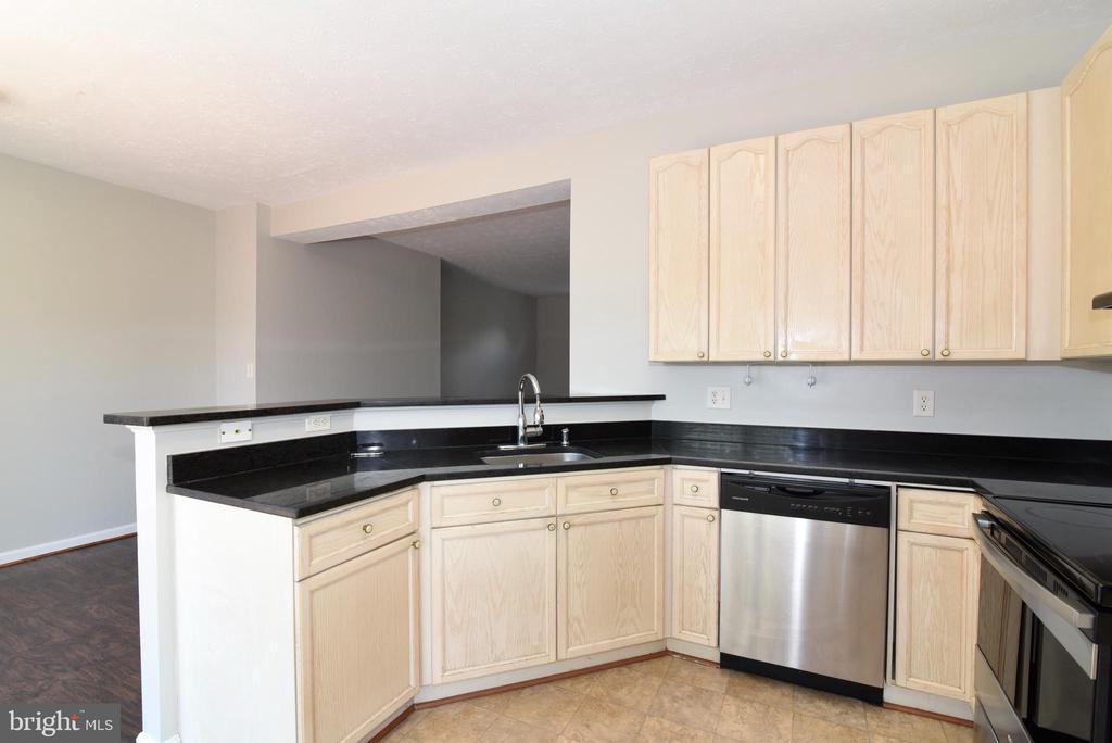 Granite - SS appliances - 44077 TIPPECANOE TER, ASHBURN