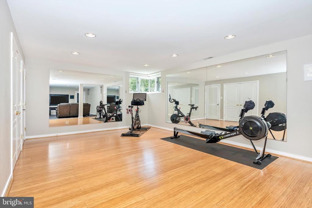 work out room - 9706 WOODLAKE PL, NEW MARKET