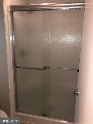 Master Bath shower - 315 LIMESTONE LN, LOCUST GROVE