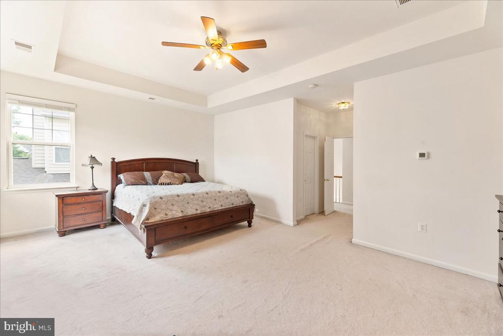 owners suite - 17510 LETHRIDGE CIR, ROUND HILL