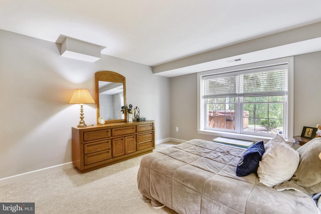 Lower Level Bedroom - 18252 SHINNIECOCK HILLS PL, LEESBURG