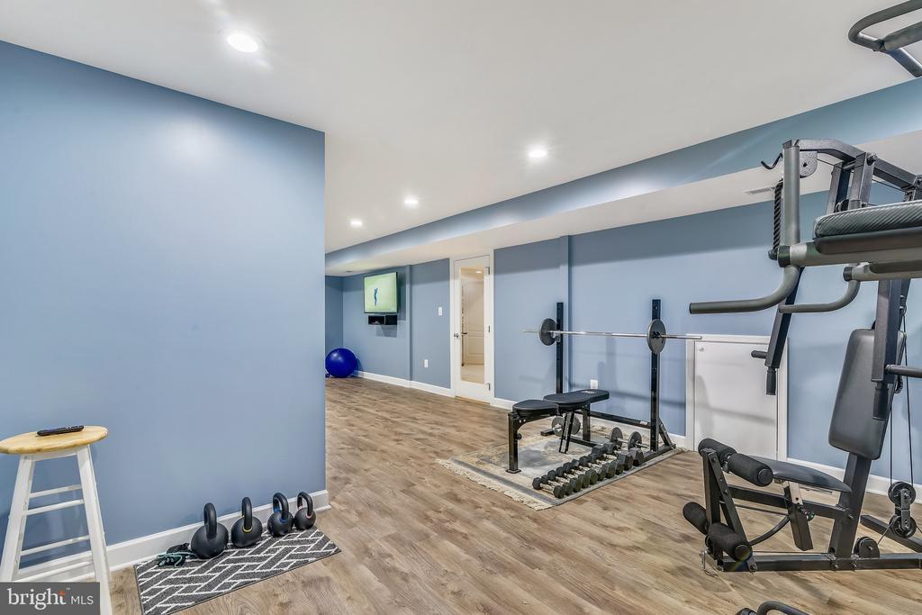 Home Gym! - 18252 SHINNIECOCK HILLS PL, LEESBURG