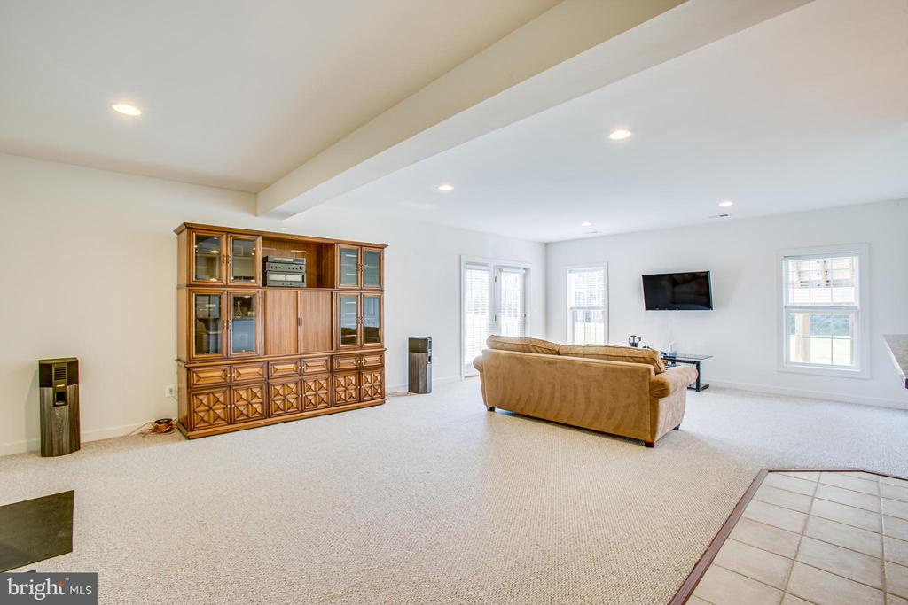 Lower level family room - 57 SNAPDRAGON DR, STAFFORD