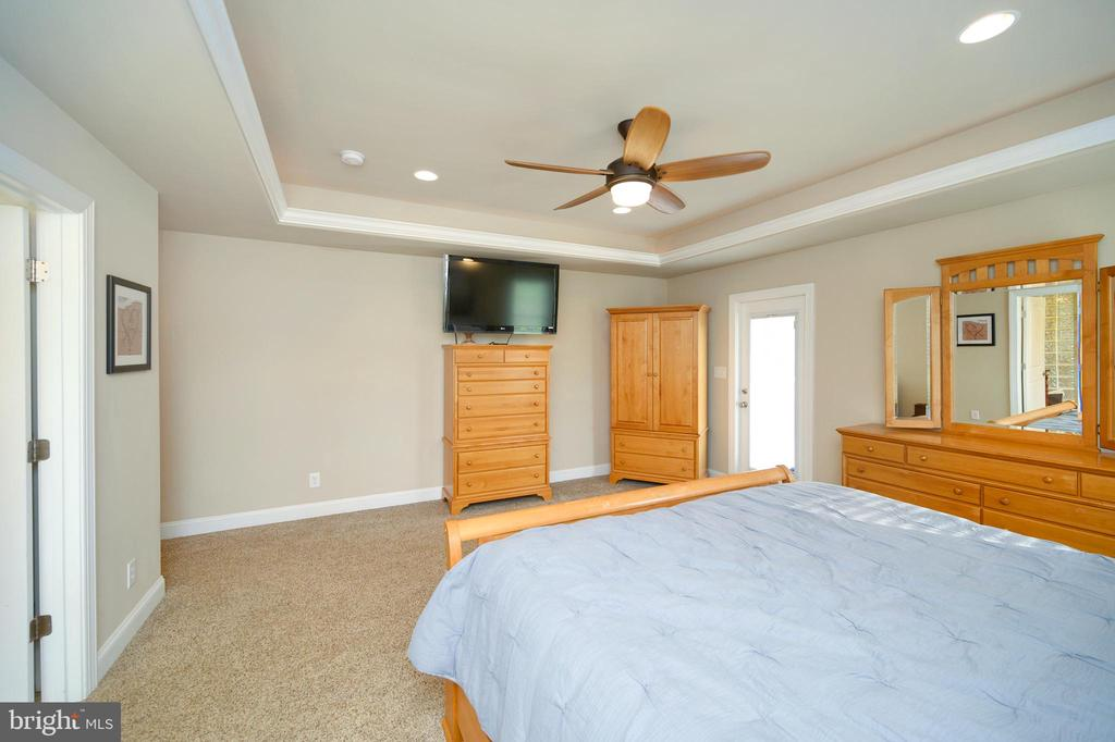 Trey Ceilings and Door to out side space - 13701 AVALON RIVER DR, FREDERICKSBURG