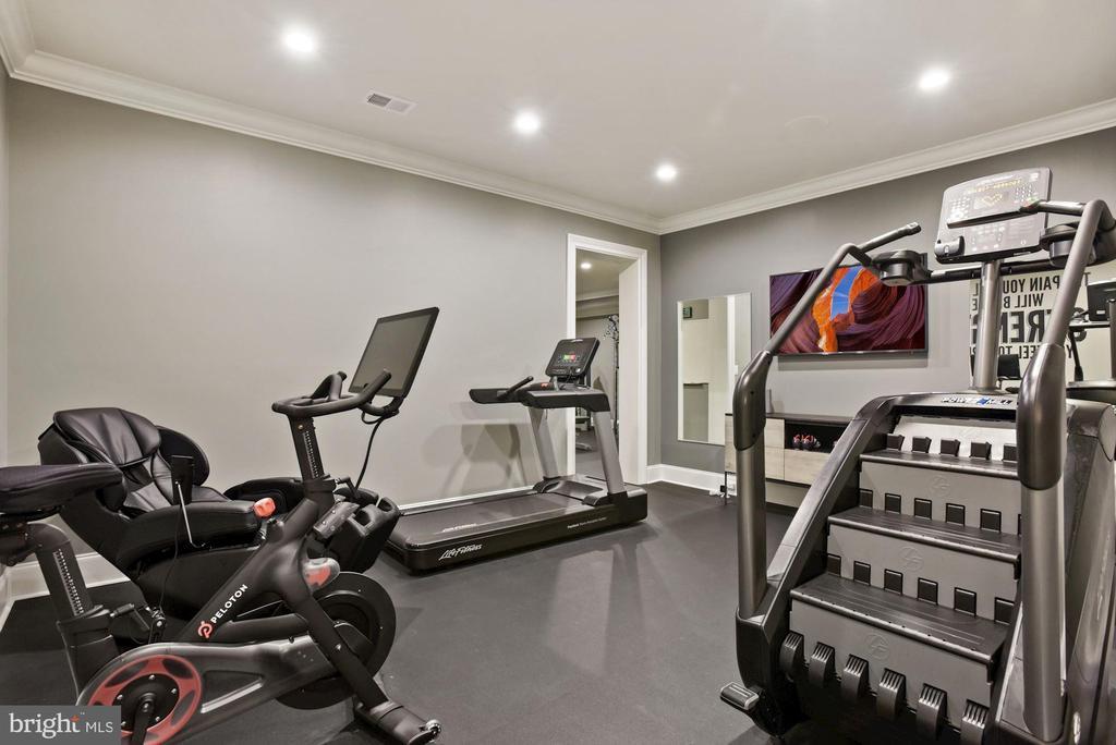 Home Gym - 22436 MADISON HILL PL, LEESBURG