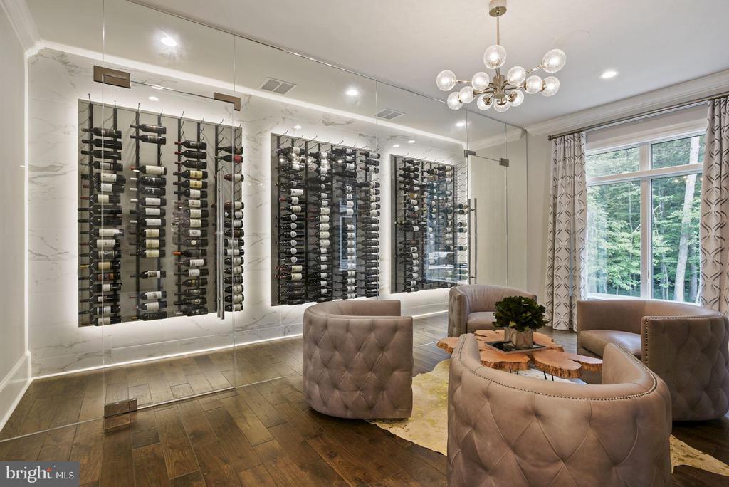 Wine Tasting Room  + Wine Cellar - 22436 MADISON HILL PL, LEESBURG