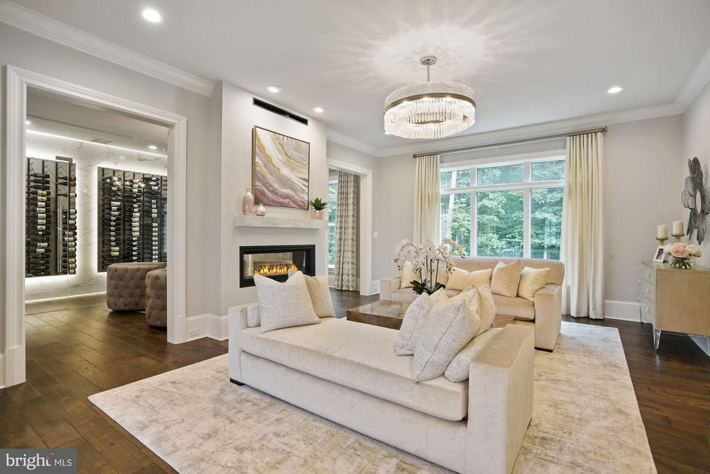 Living Room with Double Sided Fireplace - 22436 MADISON HILL PL, LEESBURG
