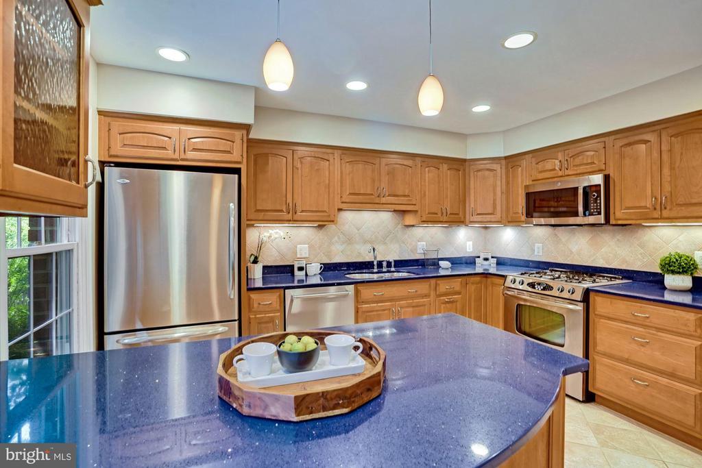 Recessed lighting w/ extra under cabinet lights - 10133 VILLAGE KNOLLS CT, OAKTON