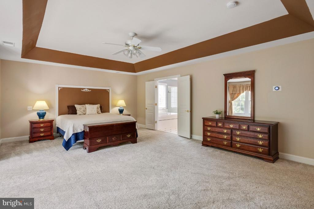 Owners Suite with Tray Ceiling - 6809 CLIFTON GROVE CT, CLIFTON