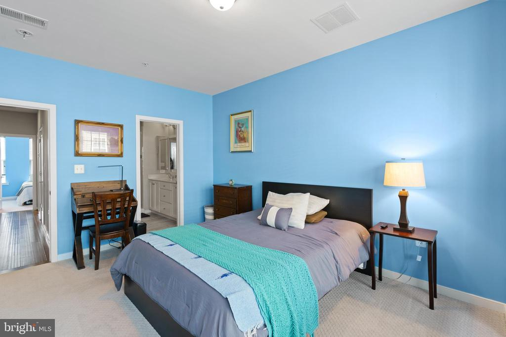 Primary bedroom - 256 BLUEMONT BRANCH TER SE, LEESBURG