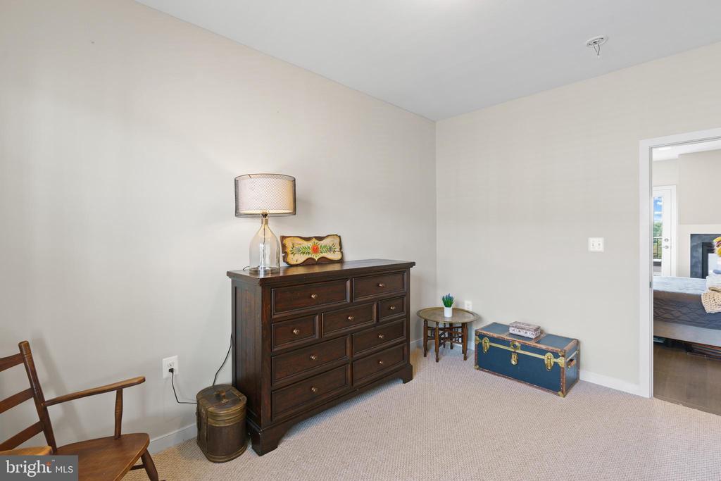 3rd bedroom on 4th level loft - 256 BLUEMONT BRANCH TER SE, LEESBURG