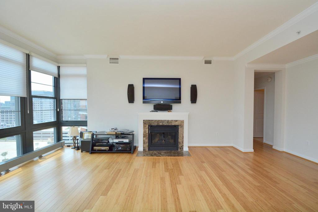 Living Room View - 1830 FOUNTAIN DR #1208, RESTON