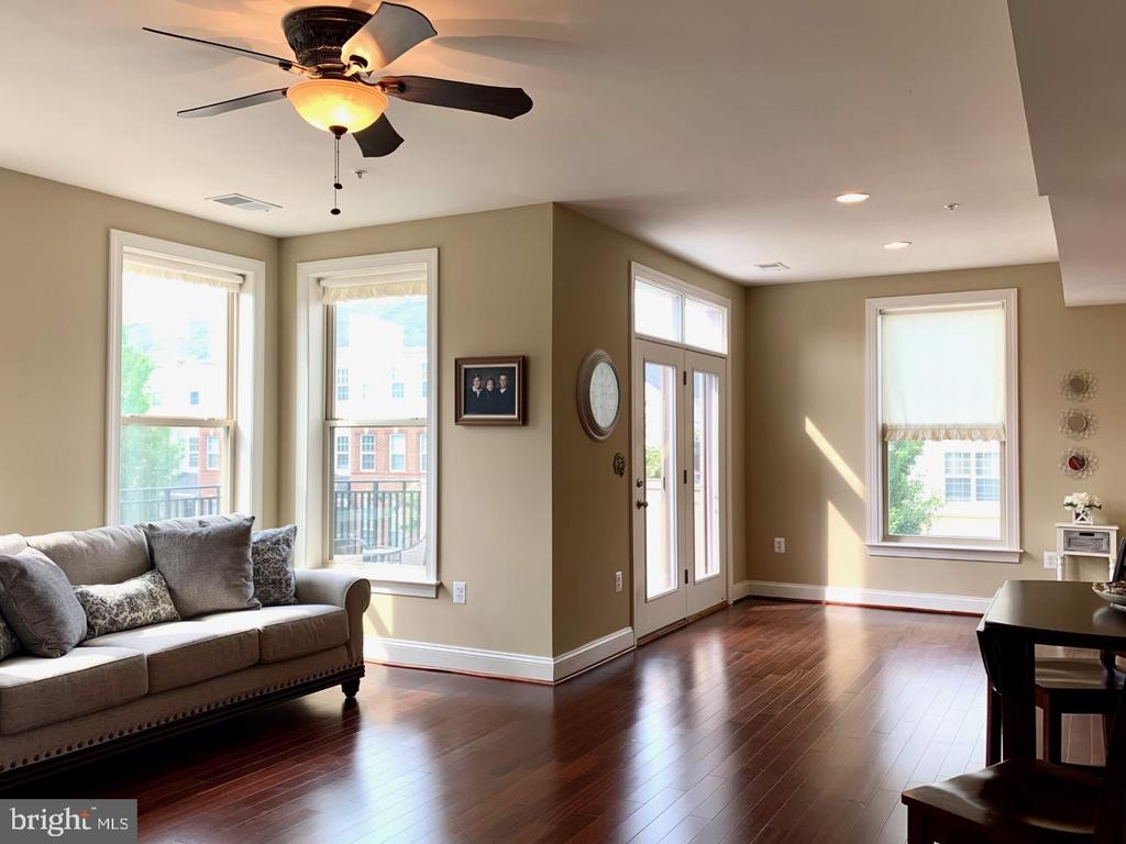 Upgraded ceiling fan and wood floors - 19383 NEWTON PASS SQ #R06V, LEESBURG