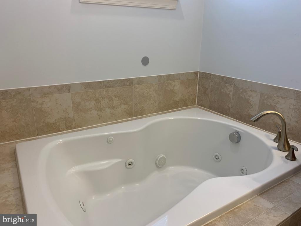 Oversized soaking tub with jets - 19383 NEWTON PASS SQ #R06V, LEESBURG