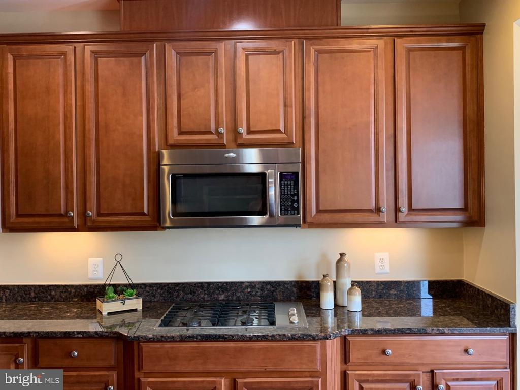 Gas cooktop and built in microwave - 19383 NEWTON PASS SQ #R06V, LEESBURG