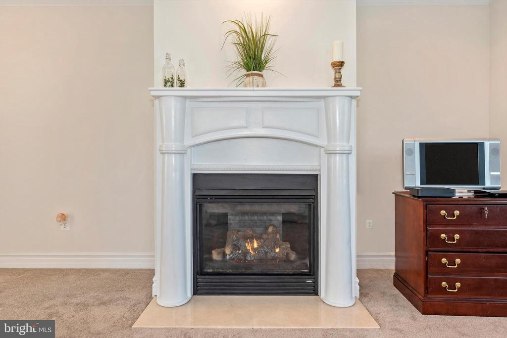 Master Suite Gas Fireplace - 7525 OLD RECEIVER RD, FREDERICK