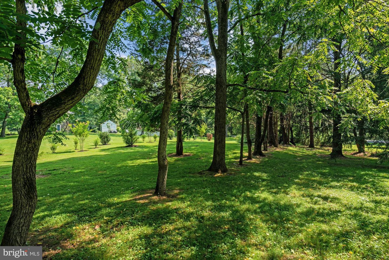 1266 Taylorsville Road , WASHINGTON CROSSING, Pennsylvania image 41