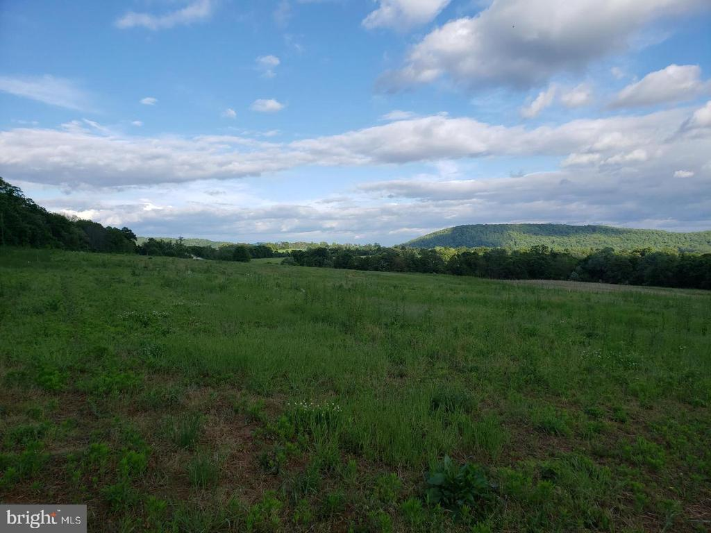 You can see Sugar Loaf on a clear day - 12107 PETEY LN, LOVETTSVILLE