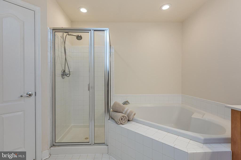 Primary Bathroom soaking tub - 43151 CROSSWIND TER, BROADLANDS