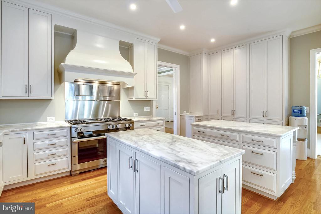 Spectacular kitchen abundance storage - 3038 N PEARY ST, ARLINGTON