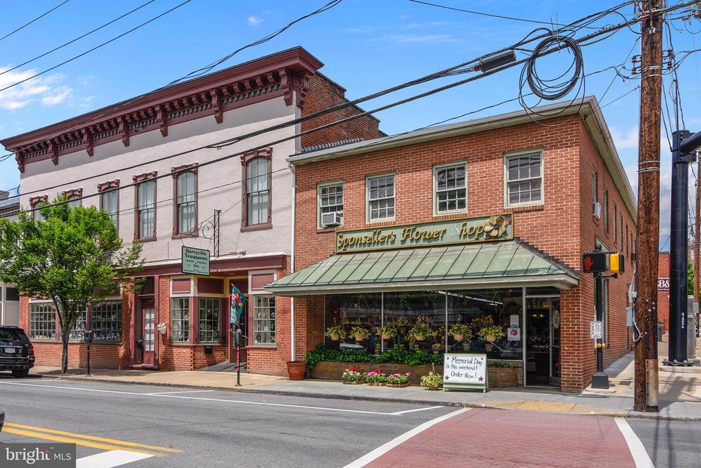 Main Street Berryville - 114 S BUCKMARSH ST, BERRYVILLE