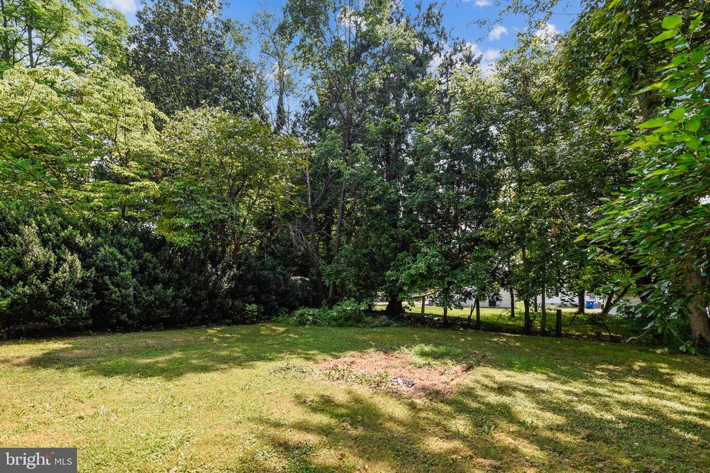 pleasing back yard - 114 S BUCKMARSH ST, BERRYVILLE