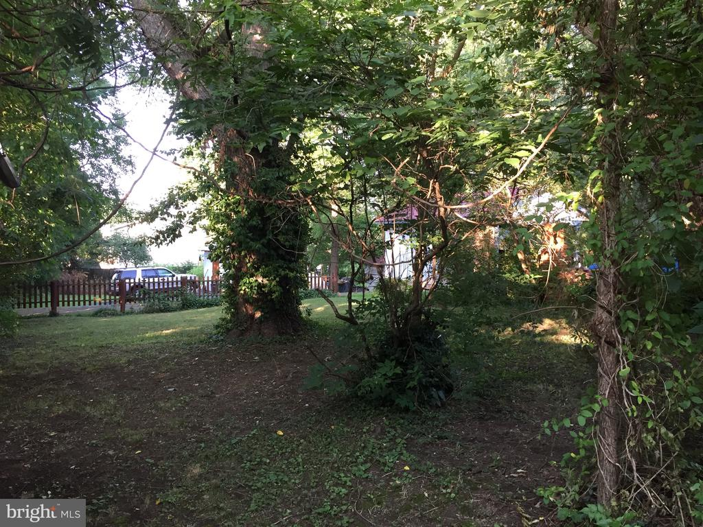 back yard - 14 LIBERTY ST, BERRYVILLE