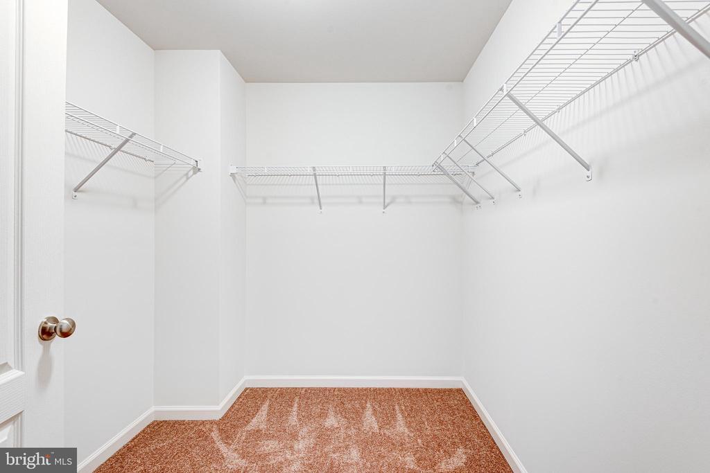 Walk-in Closet - 117 BUTLER CIR, LOCUST GROVE