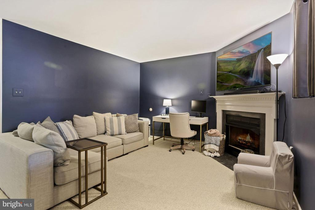 Family Room / Rec Room - Spacious, Fresh Paint! - 6342 JAMES HARRIS WAY, CENTREVILLE