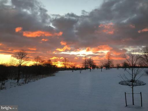 Winter Sunrise - 41192 BLACK BRANCH PKWY, LEESBURG