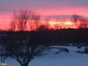 Winter Sunset - 41192 BLACK BRANCH PKWY, LEESBURG