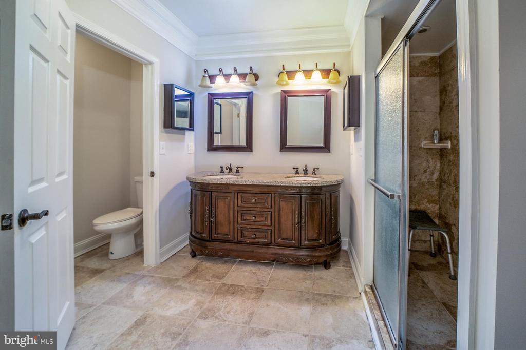 full bathroom on lower level - 20173 GLEEDSVILLE RD, LEESBURG