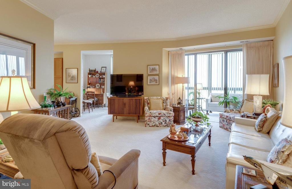 Stunning living area with plush carpet - 19365 CYPRESS RIDGE TER #1021, LEESBURG