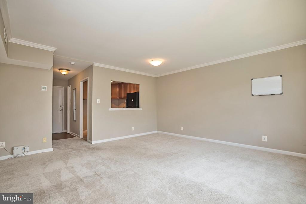 Newer Carpet Freshly Cleaned - 10570 MAIN ST #517, FAIRFAX