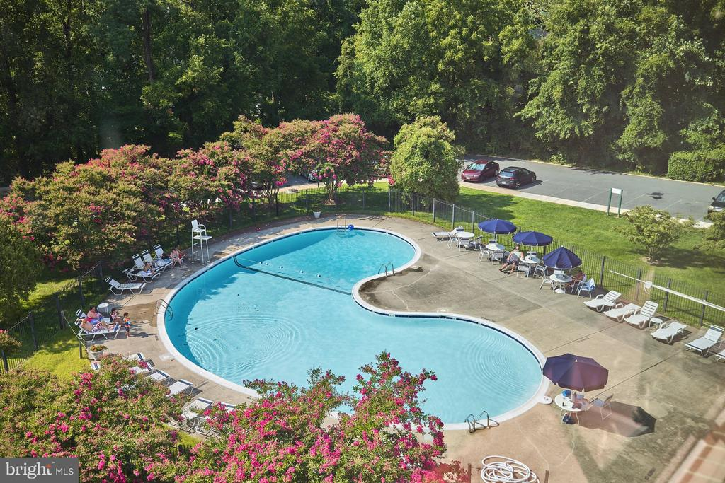 View from The Condo - 10570 MAIN ST #517, FAIRFAX