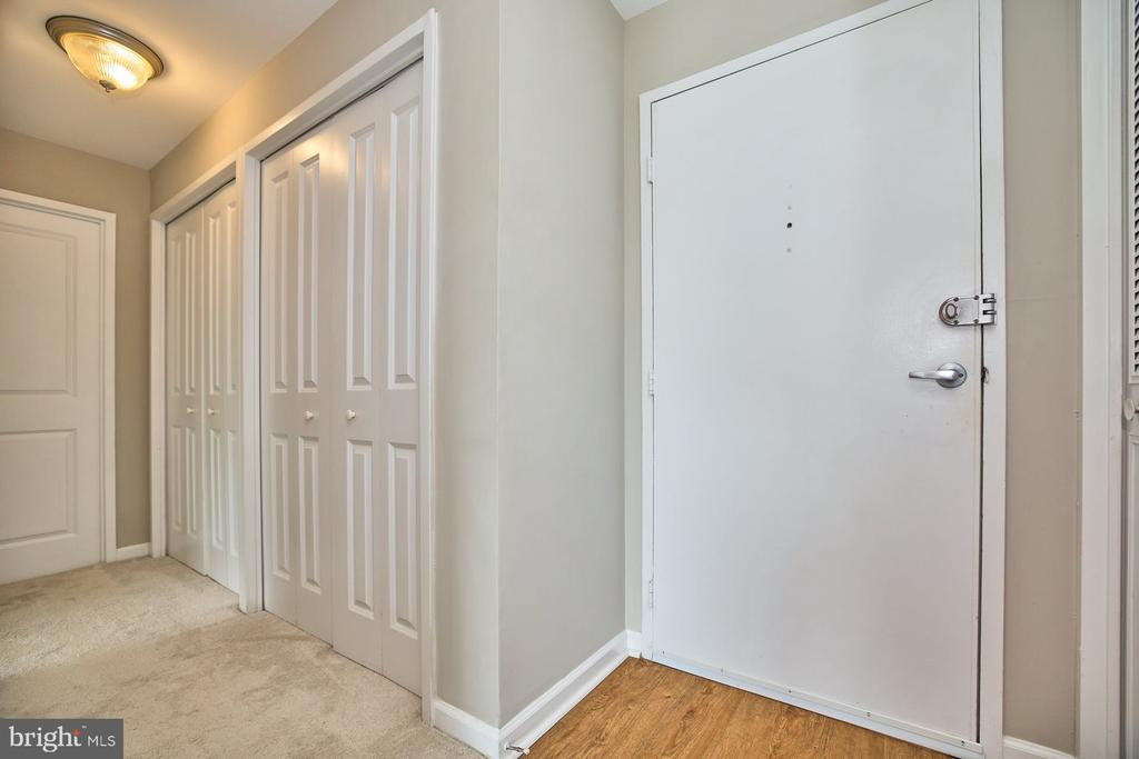Front Door and Coat Closet - 10570 MAIN ST #517, FAIRFAX