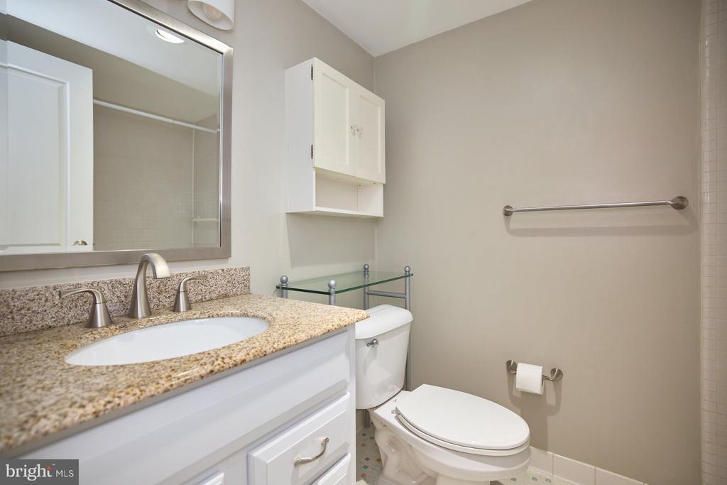 Updated Bathroom Vanity - 10570 MAIN ST #517, FAIRFAX