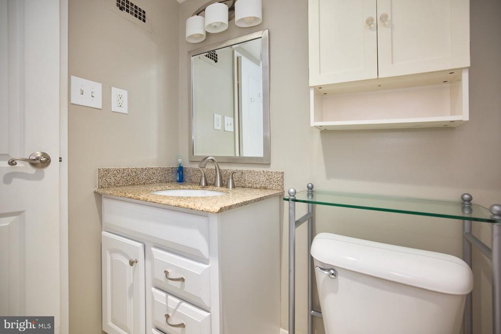 Extra Bathroom Cabinet - 10570 MAIN ST #517, FAIRFAX