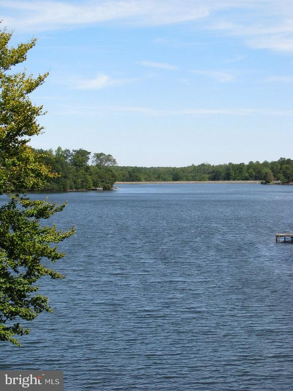 Lake Community - 701 CANTERBURY DR, RUTHER GLEN