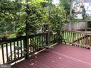 Deck off dining room - 5905 DEWEY DR, ALEXANDRIA