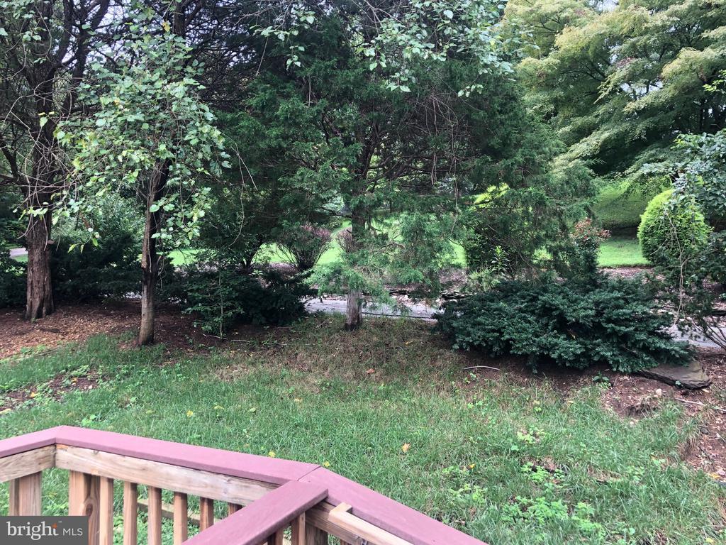 Beautiful grounds of estate next door - 5905 DEWEY DR, ALEXANDRIA
