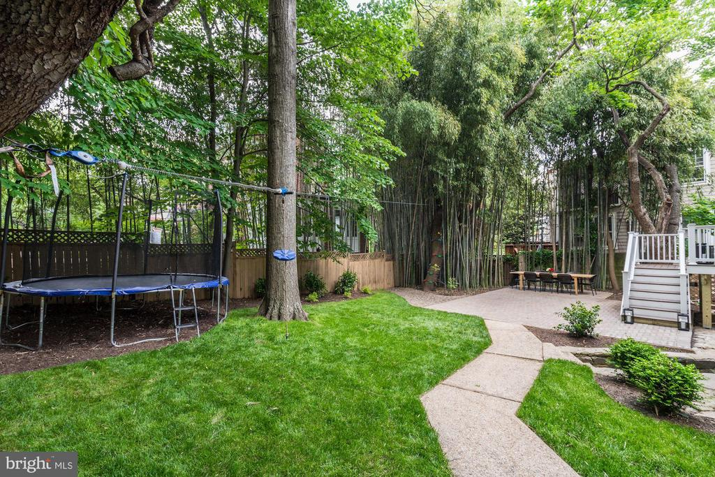 Ample Grassy Area for a Jungle Gym - 3315 HIGHLAND PL NW, WASHINGTON