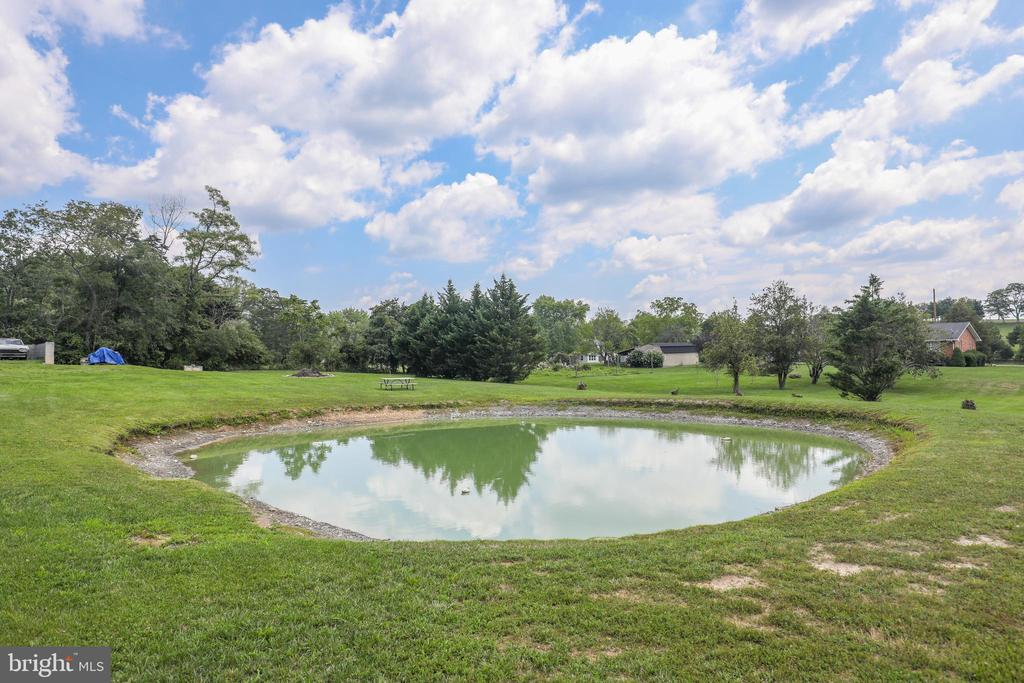 Your own pond!  Bring the horses! - 140 BOWMAN LN, WINCHESTER