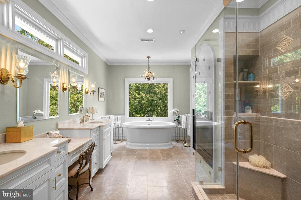 Master Bath: no words necessary - 20260 ISLAND VIEW CT, STERLING