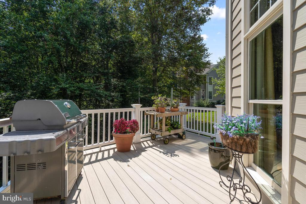 Beautiful Decking - 20260 ISLAND VIEW CT, STERLING