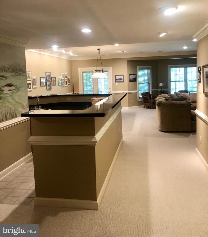 Lower Level: OPEN BAR / GAME / LIVING SPACE - 20260 ISLAND VIEW CT, STERLING