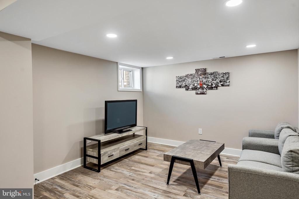 Lower level entertainment area - 2217 FRANKLIN ST NE, WASHINGTON