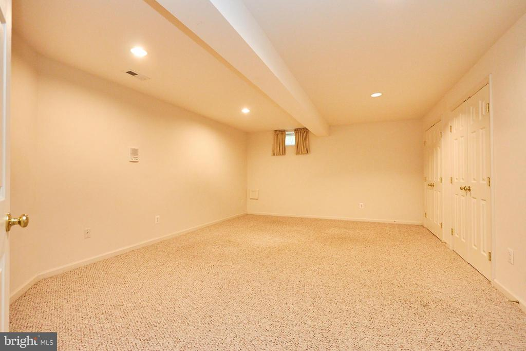 Lower level room 3 with two double closets - 619 BRECKENRIDGE WAY, SHENANDOAH JUNCTION