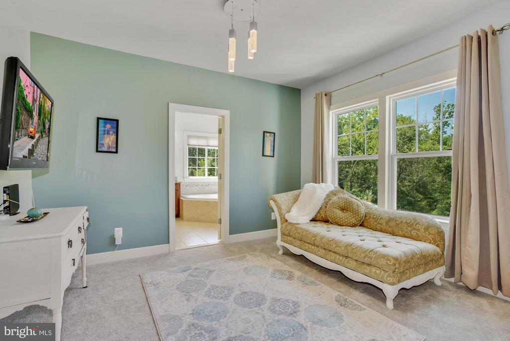 Sitting Room in Primary Bedroom - 41192 BLACK BRANCH PKWY, LEESBURG